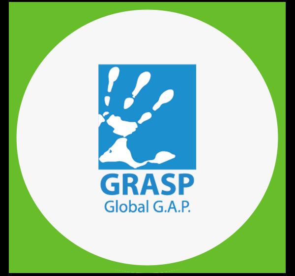 Certificação GRASP